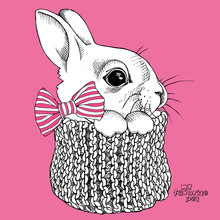 Portrait Of A Little Bunny With Striped Tie In Knitted Scarf On Pink Background. Vector Illustration.