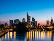 Frankfurt skyline in the night