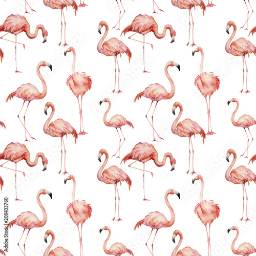 Canvas Prints Flamingo Bird Watercolor pink flamingo pattern. Hand painted bright exotic birds isolated on white background. Wild life illustration for design, print, fabric or background.