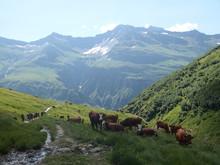 Alpy, Francja, Tour Du Mont Blanc -  Ponad Doliną Les Contamines