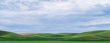 Palouse Landscape In Spring