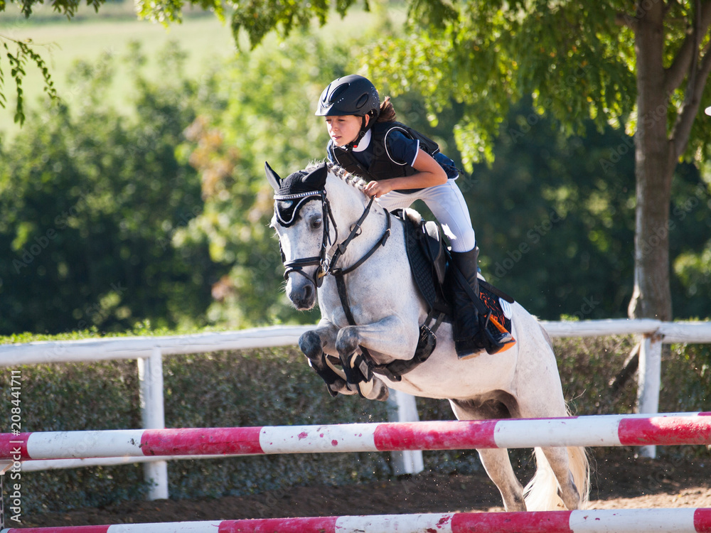 Fotografie, Obraz Girl with white pony jumping over the hurdle on equine competition
