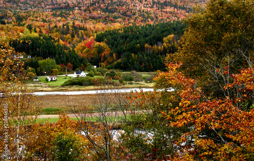 Leinwand Poster Margaree Valley in autumn