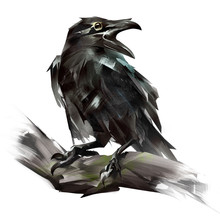 Painted Raven Bird Sitting On ...