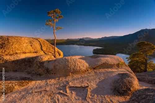 Fotobehang Chocoladebruin Beautiful sunset. Pine tree at sunset on a rocky mountains hill. Mountain lake on background.