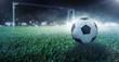 canvas print picture - Fußball liegt auf dem Spielfeld vor dem Tor