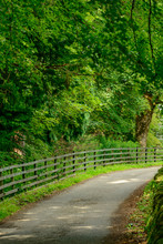 A Narrow Road In A Rural  Area...