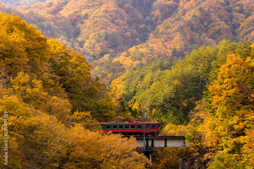 Fotobehang Asia land red train commuter Fukushima Japan