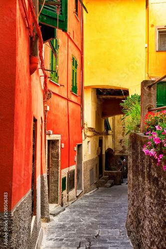 Poster Smal steegje Bright old street with colorful architecture in Riomaggiore, Cinque Terre, Italy. Narrow lane.