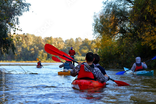 Valokuva  Group of kayakers row along the Danube river against a background of yellow autu