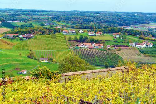 Tuinposter Lavendel Vineyards surrounding castle Riegersburg, Styria, Austria