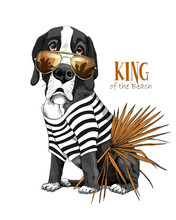Vector Illustration With Great Dane Dog In A Striped Cardigan, In A Sunglasses And With A Fan Palm Leaf. King Of A Beach - Lettering Quote. Inspiration Poster, Hand Drawn Style T-shirt Print.