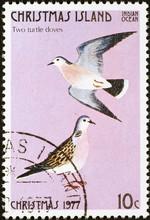 Twelve Days Of Christmas - 2 Turtle Doves On Postage Stamp Of Christmas Island