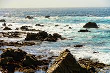 Asilomar State Marine Reserve California