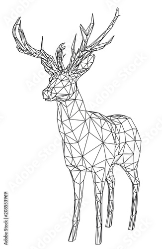 Deer polygonal lines illustration. Abstract vector deer on the white background