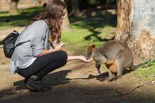 Female Tourist Feeding Wallaby