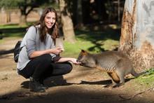 Female Tourist Hand Feeding Wa...