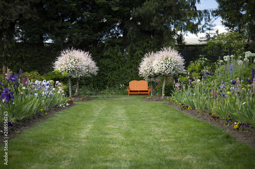 Fotografia, Obraz  View of English Style Garden Path of Grass Lined, Mixed Flower Beds, Blooming Sa