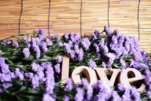 """Wooden Letters Word """"LOVE"""" On Purple Marguerite Daisy Flowers Background.Use For Valentine Day.Theme Creative Abstract Blur Background With Bokeh Effect."""