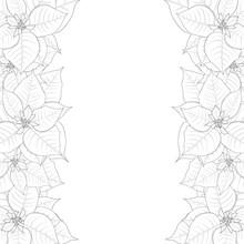 Poinsettia Outline Border Isol...