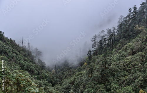 Fotobehang Grijs Mountain and forest scenery in Nepal
