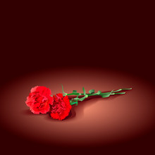 Two Mourning Carnations For A Funeral. Red Flowers On A Dark Background. Vector Illustration