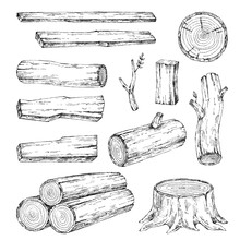 Wood, Burning Materials. Vector Sketch Illustration Collection. Materials For Wood Industry. Stump, Branch, Timber. Tree Lumber
