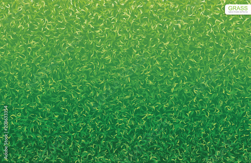 Photo Stands Olive Green nature lawn grass texture and pattern for background. Vector.