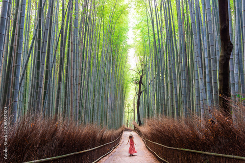 Poster Bamboe Woman walking in Bamboo forest, Arashiyama, Japan