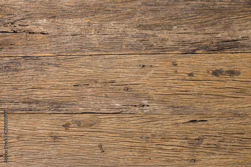 Poster Bois texture of bark wood use as natural background