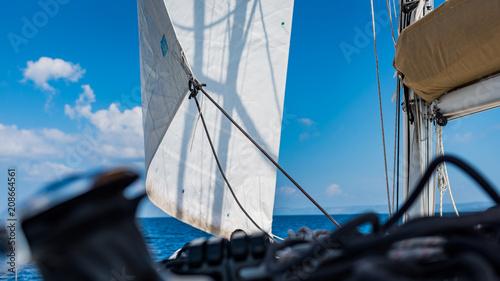 Poster Zeilen żeglarstwo biały żagiel