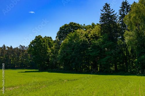 Foto op Plexiglas Landschappen Polish landscape