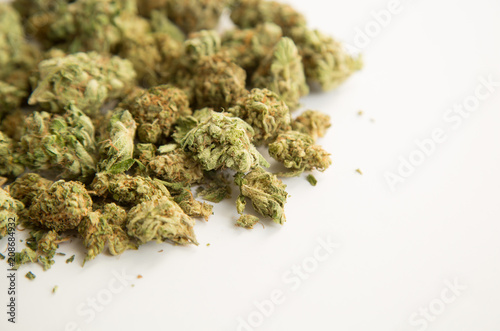Weed in close up on a white background