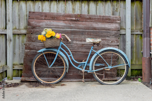 Shabby blue vintage bike on barnwood background