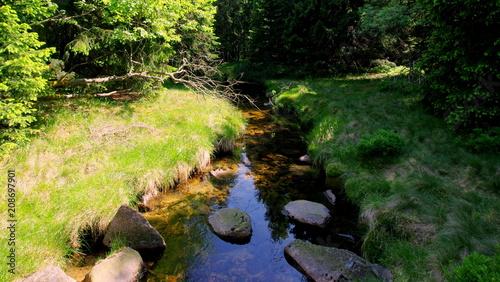 Mały górki strumień w lesie w Karkonoszach
