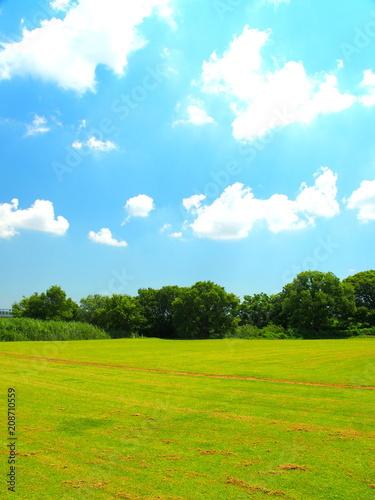 Foto op Plexiglas Weide, Moeras 野球場のある河川敷風駅