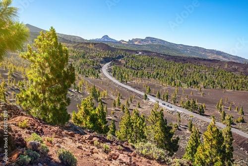 Foto op Aluminium Zalm road in the mountains of Tenerife
