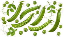 Green Peas, Pods And Leaves Set Isolated On White Background