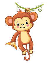 The Monkey Hangs On A Branch A...