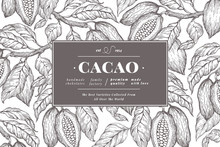 Cocoa Bean Tree Banner Templat...