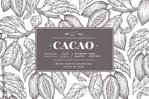 Cocoa bean tree banner template. Chocolate cocoa beans background. Vector hand drawn illustration. Vintage style illustration.