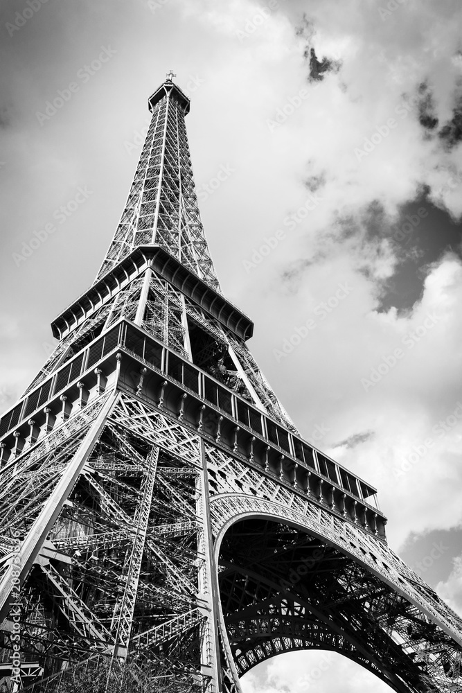 Fototapeta The Eiffel tower, Paris France
