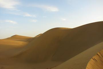 Fototapeta na wymiar bright yellow barkhans of Taklamakan desert at dawn, China