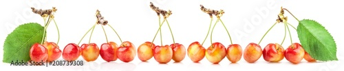 Foto auf Leinwand Kirschblüte Rainier cherries isolated on white background.