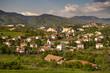town of Melnik
