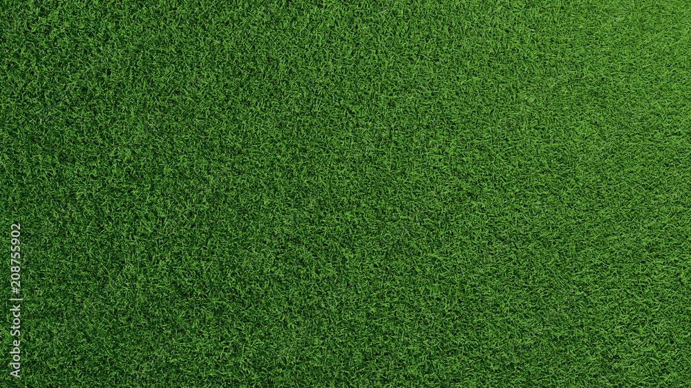 Fototapety, obrazy: Gras Rasen Textur von oben