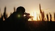 A sniper rifles from a rifle with an optical sight. On the Sunset. Sports shooting and hunting concept