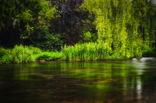 A Long Exposure Of Lush Green Plants And Trees Growing Along The River Bank At Ashford-in-the-water In The Peak District National Park.