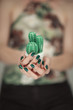 Woman hands holding a little artificial cactus, with perfect green nail polish, sensual studio shot can be used as background
