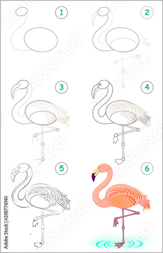 Page Shows How To Learn Step By Step To Draw A Cute Flamingo